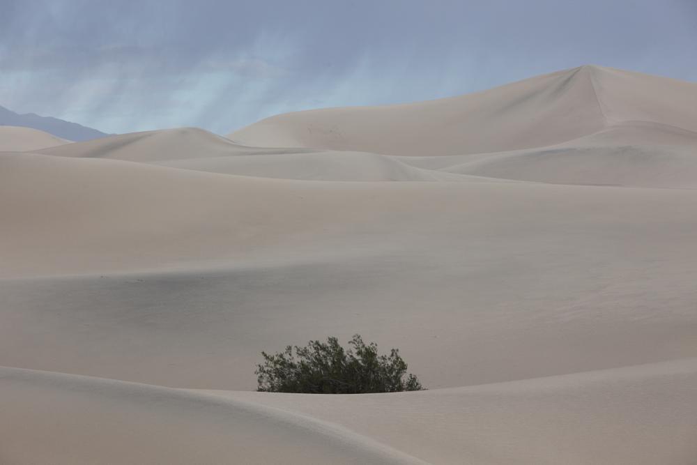 Photo in Travel #death valley
