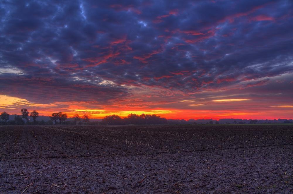 Photo in HDRI #hdr #dannenberg #landscape #fields #sunrise #feld #felder #acker #sonnenaufgang #lower saxony #germany #clouds #wolken #niedersachsen #wendland #maik richter #metal maik #2013 #tonemapping