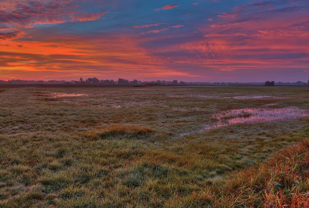 Photo in HDRI #hdr #sunrise #clouds #fields #meadow #water #lower saxony #germany #dannenberg #prabstorf #sonnenaufgang #wendland #wolken #wiese #wiesen #wasser #felder #niedersachsen #maik richter #metal maik #2013 #canon #eos 1100d #tonemapping
