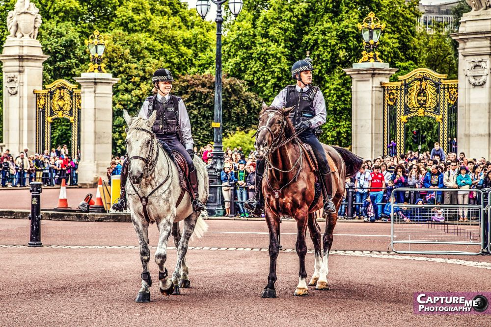 Photo in Street Photography #police #parade #buckingham