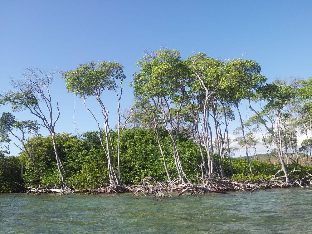 Photo in Random #boat trip