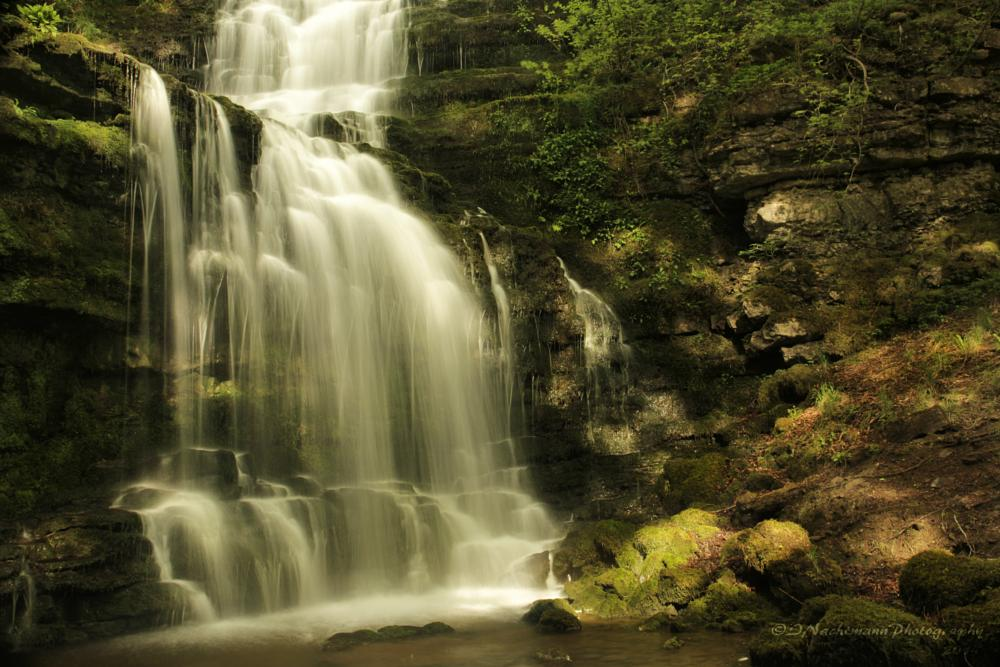 Photo in Nature #scalaber force #waterfall #stream #beck #woodland #nature #ravine #water #settle #yorkshire dales