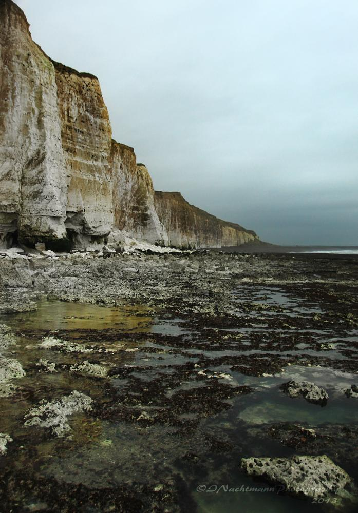 Photo in Random #low tide #white cliffs #cliffs #chalk cliffs #newhaven #sea #english channel #reflections #sussex