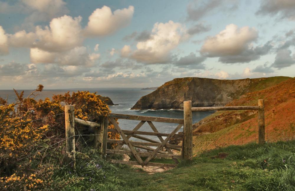 Photo in Landscape #gates #sea #coast #cliffs #golden hour #tintagel #cornwall