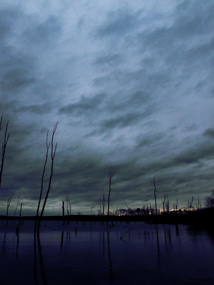 Photo in Landscape #water #lake #tree #sunrise