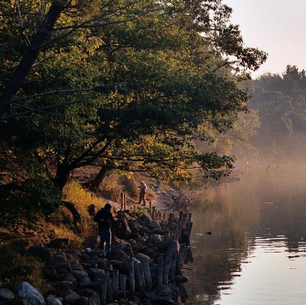 Photo in Sports #river fishing #fisherman #fishing mist