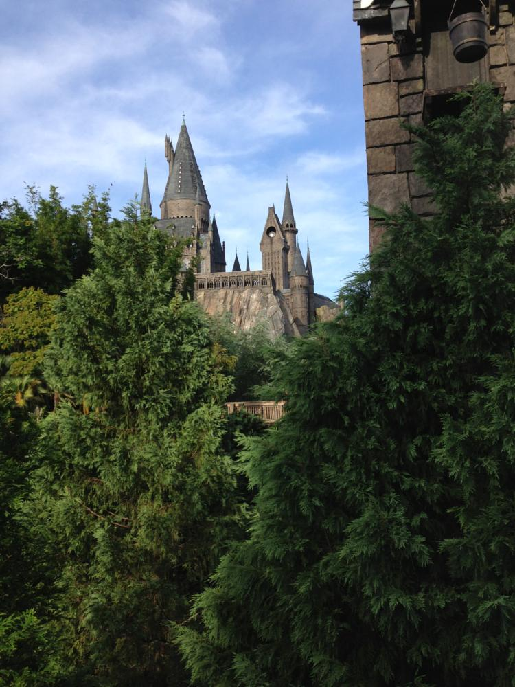 Photo in Random #wooded castle #hogworts #fantasy castle