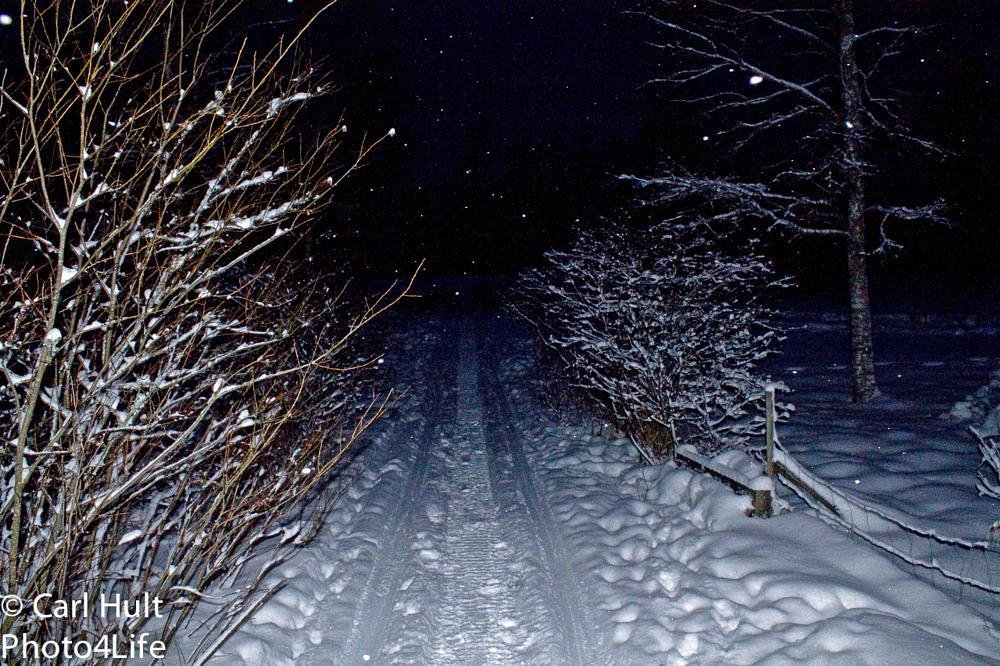 Photo in Landscape #snow #winter #tracks
