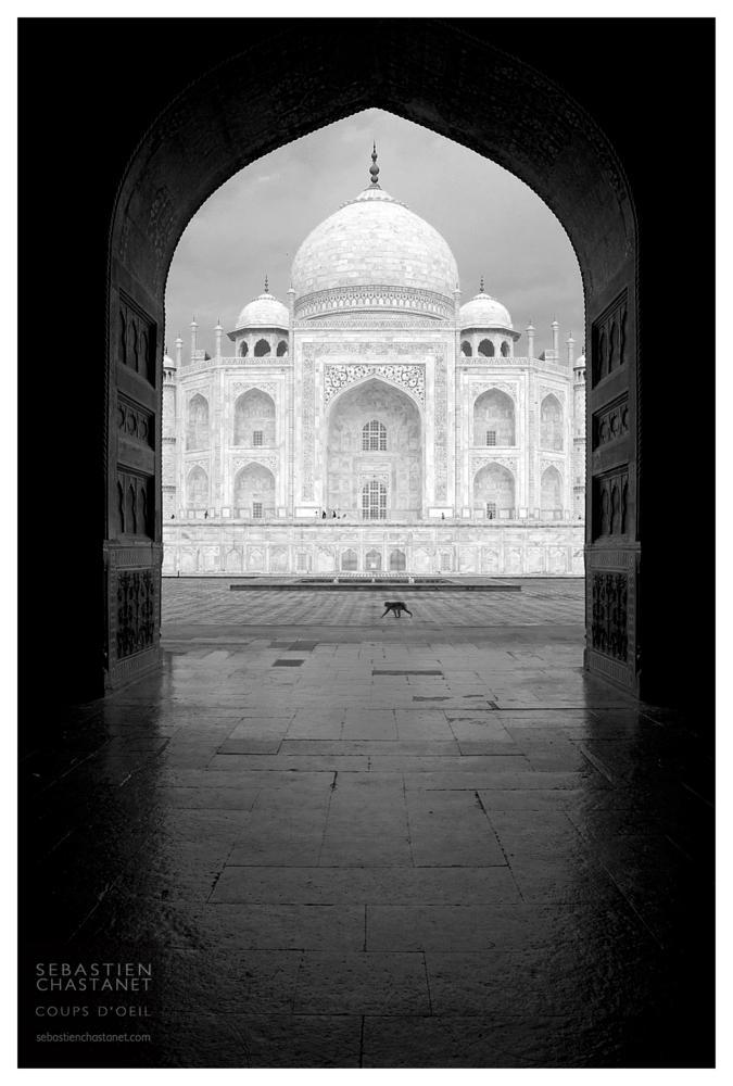 Photo in Black and White #taj mahal #india #sébastien chastanet #coups d'oeil