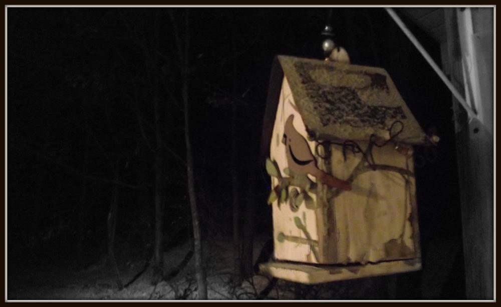Photo in Nature #birdhouse #storm #snow