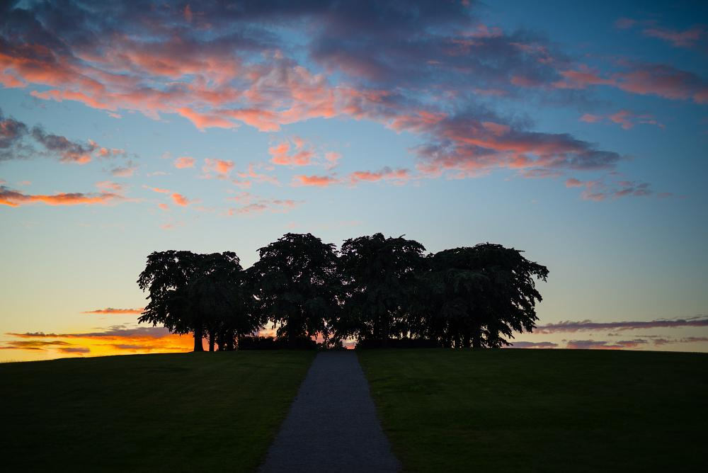 Photo in Landscape #almhöjden #skogskyrkogården #stockholm #enskede