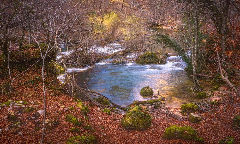 Photo in Nature #no people #outdoors #nature #water #forest #river #tree #landscape #scenics #travel #stream #flowing #plant #day #hdr #autumn #leaf #leaves #colorful #colors #calm #peace #urederra #navarra #spain #natural park #urbasa-andía natural park #sierra de urbasa #baquedano #estella #pyrenees
