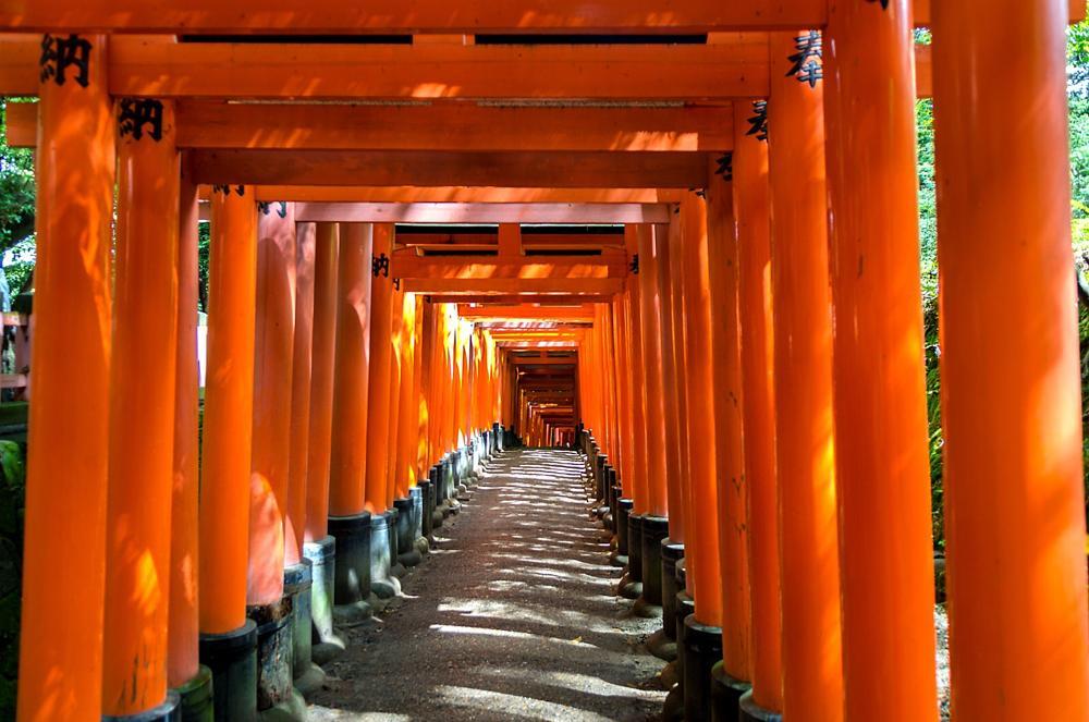 Photo in Travel #kyoto #japan #fushimi #inari #shrine #travel #gates #red