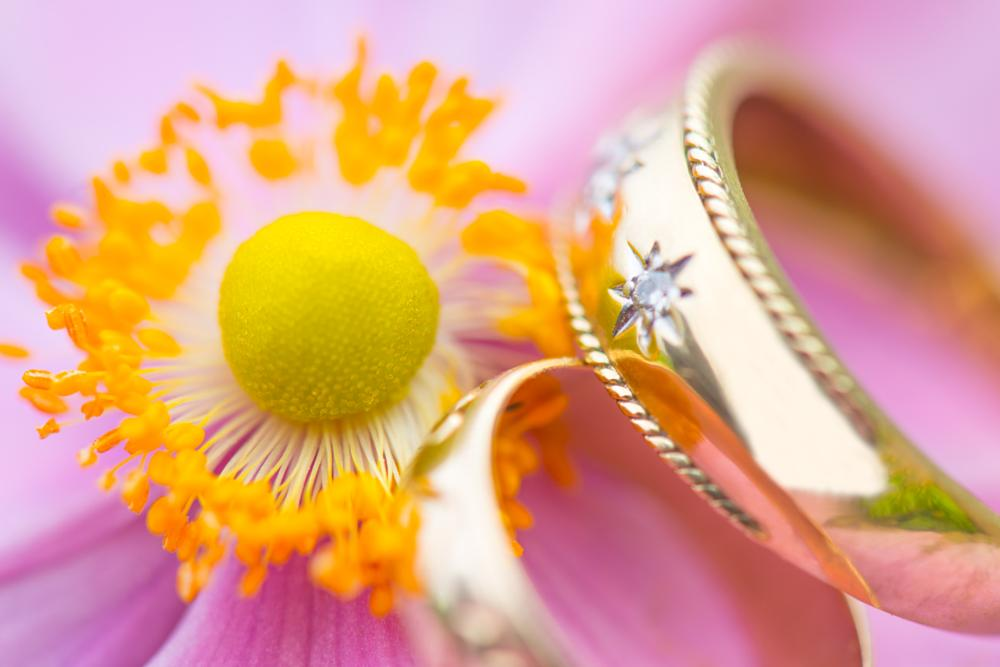 Photo in Wedding #wedding photography #wedding photographers in essex #essex wedding photography #nikon d800 #d800 #105mm micro nikon #105 macro