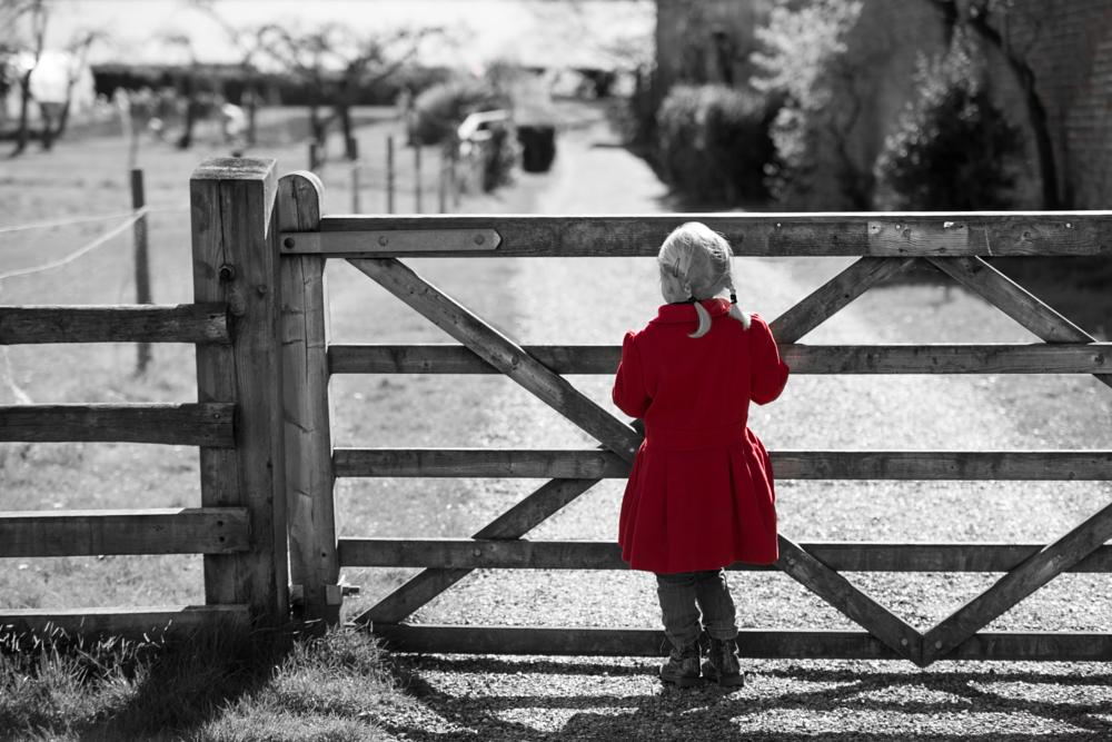 Photo in Landscape #little girl lost #summer #farm #red coat #colour pop #nikon d800 #d800 #nikkor #field #fence #farmland #country #clacton on sea #chelmsford