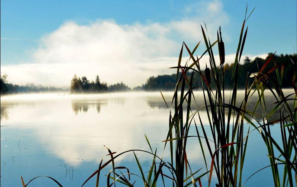 Photo in Landscape #river #sky #autumn #vass #nikon