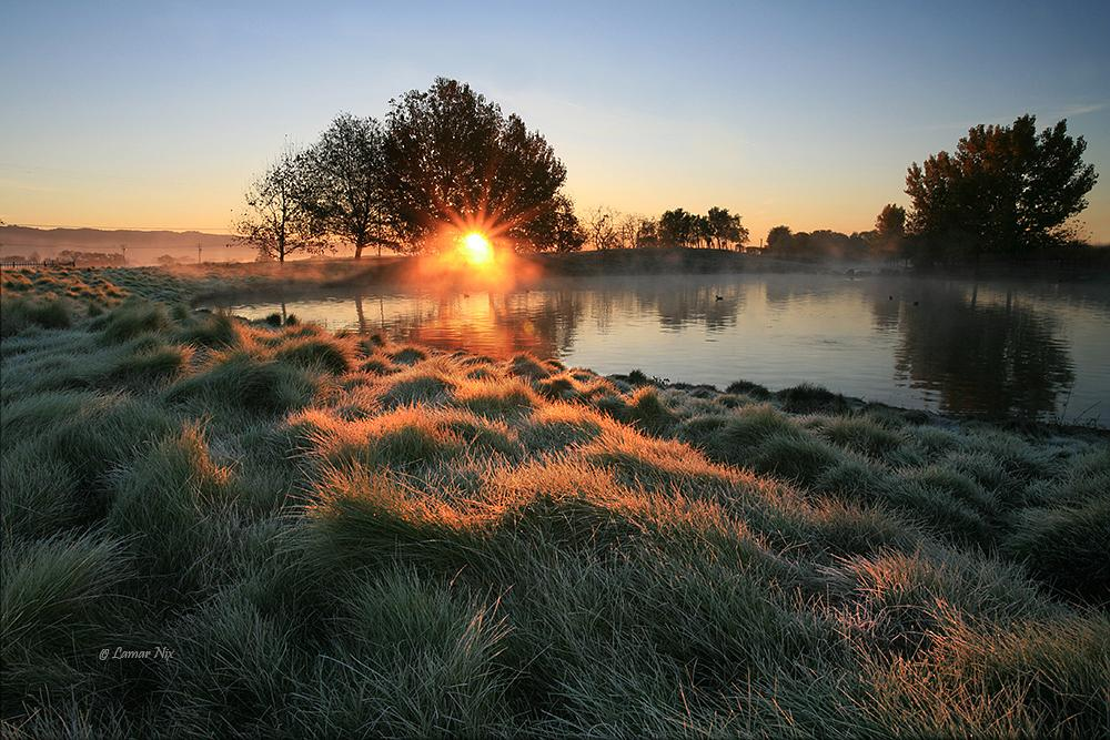 Photo in Landscape #dew #frost #frosted grass #pond