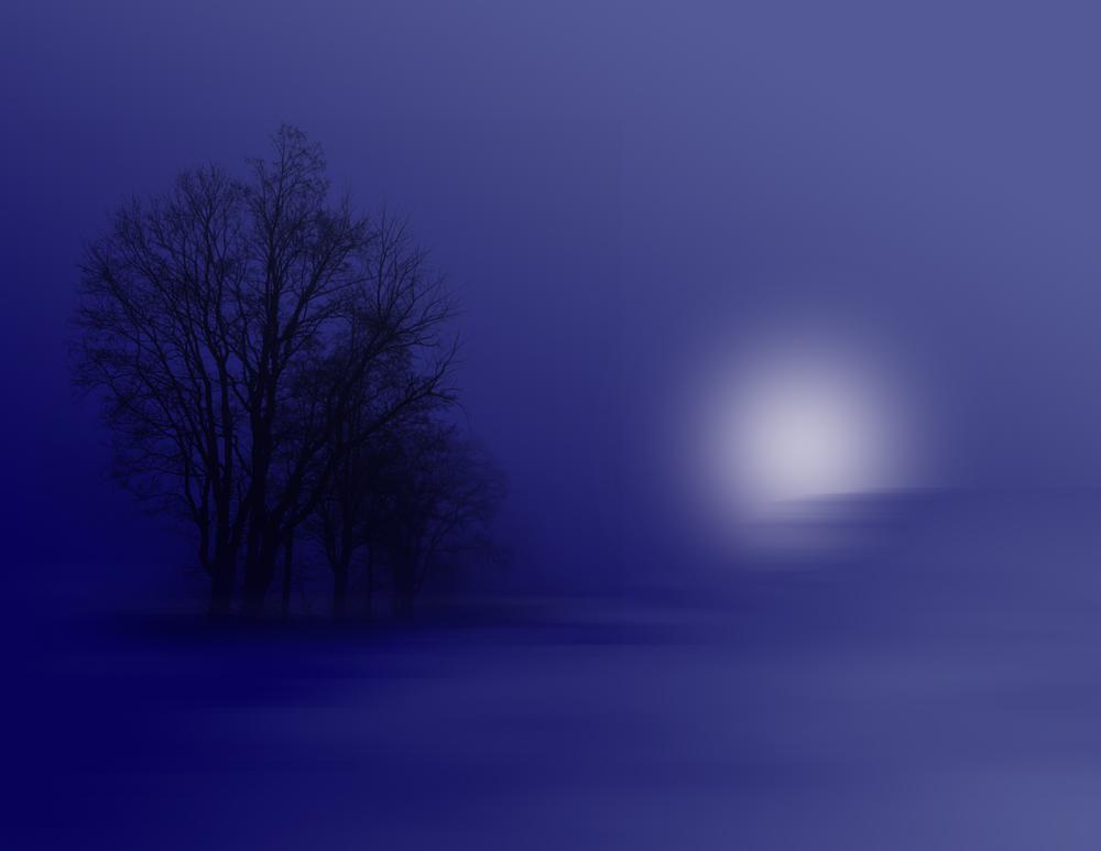 Photo in Landscape #winter #night #foggy #fog #mist #trees #moonlight