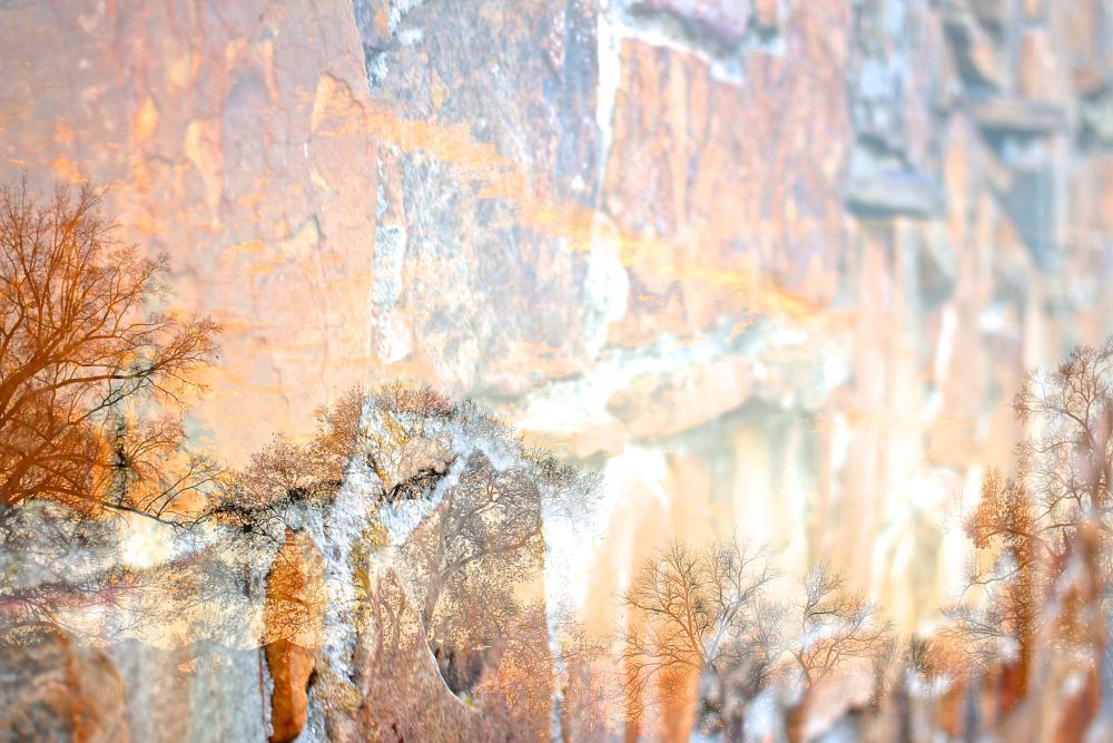 Photo in Abstract #doubleexposure #multipleexposure #tree #trees #stone #stones #photo #photography
