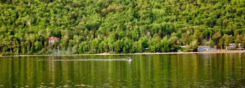 Photo in Landscape #nature #sport #rural