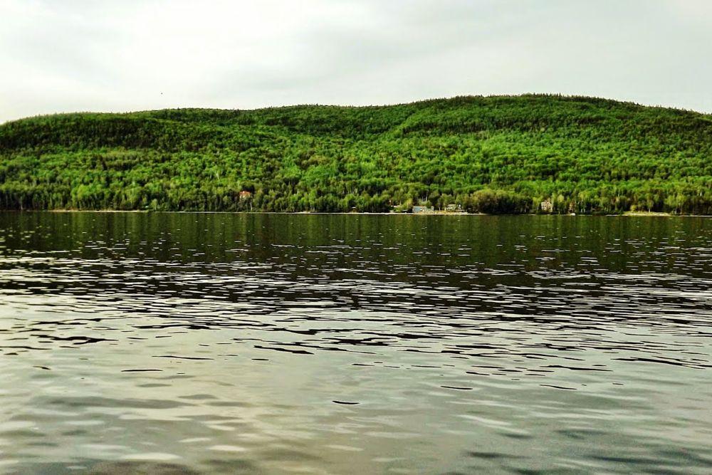 Photo in Landscape #nature #rural #sea & sand
