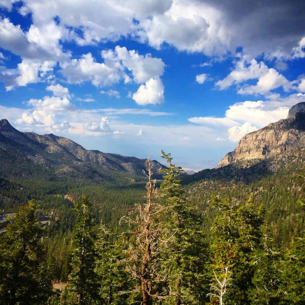 Photo in Landscape #mountains #canyon #forest