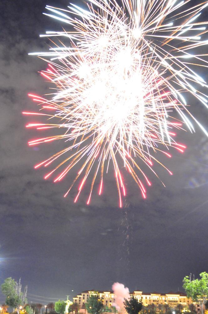 Photo in Random #fireworks #not quite dark #light up the night