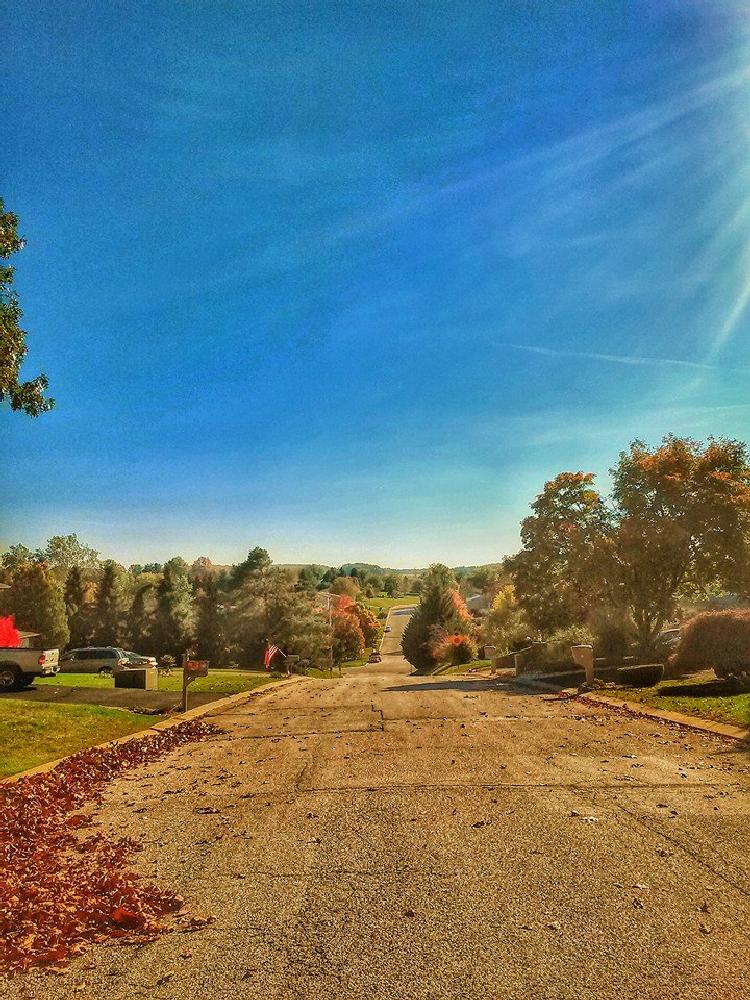 Photo in Landscape #street view #fall #season fall