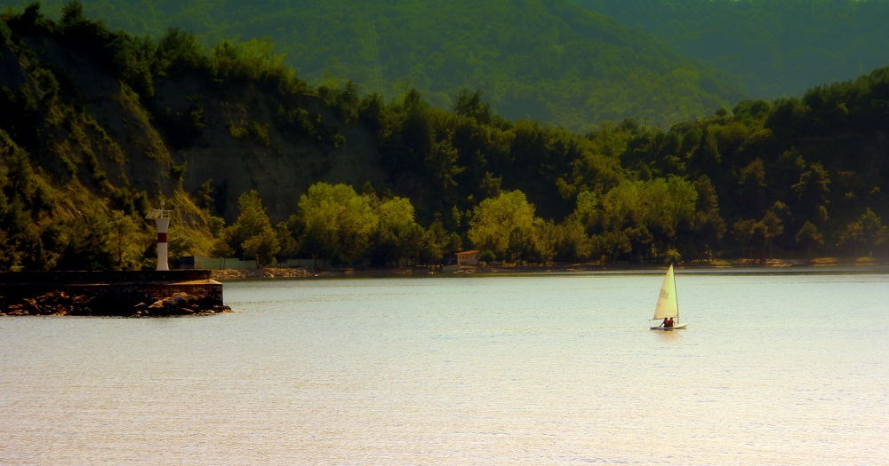 Photo in Random #sailboat #lighthouse #forest #nature