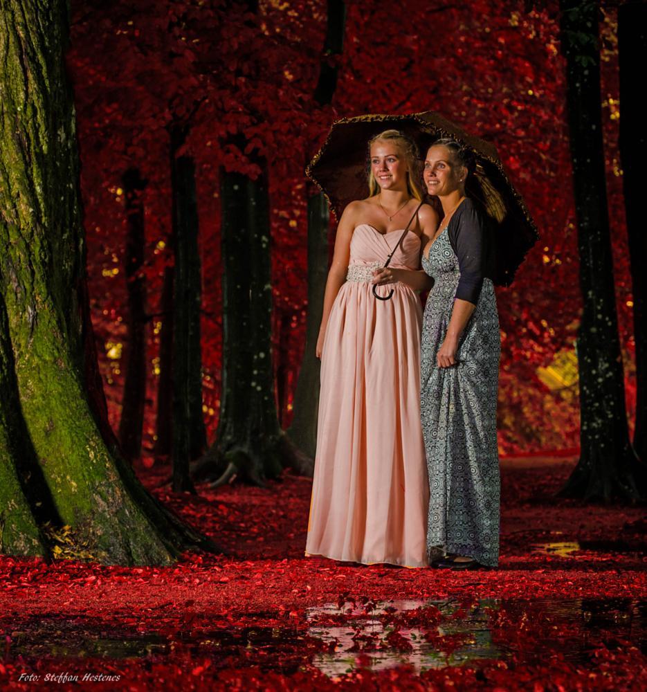 Photo in Fine Art #magic forest red pentax no