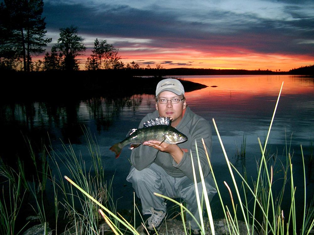 Photo in Nature #fishing #perch #nature #sunset #swedish lapland #sweden