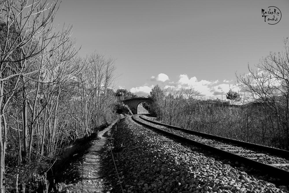 Photo in Random #tren #vias #carril #paso