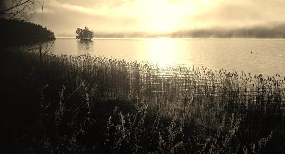 Photo in Landscape #sunset landscape sweden