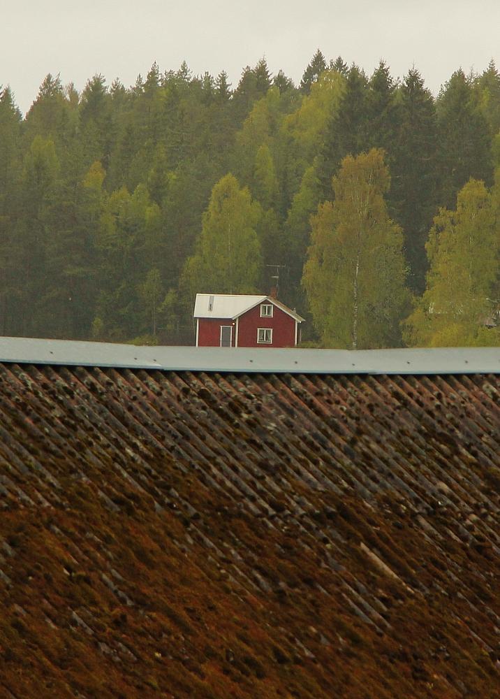 Photo in Landscape #house roof landscape