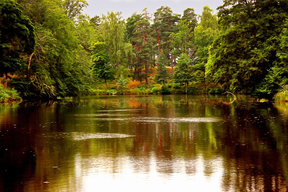 Photo in Landscape #trees #lake #green