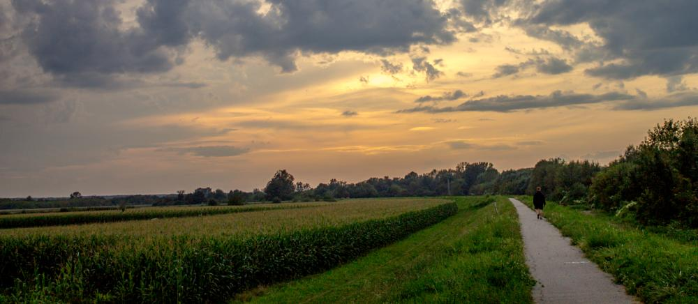 Photo in Nature #sunset in sisak