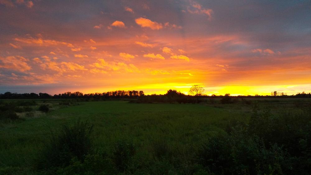 Photo in Nature #sisak sunset