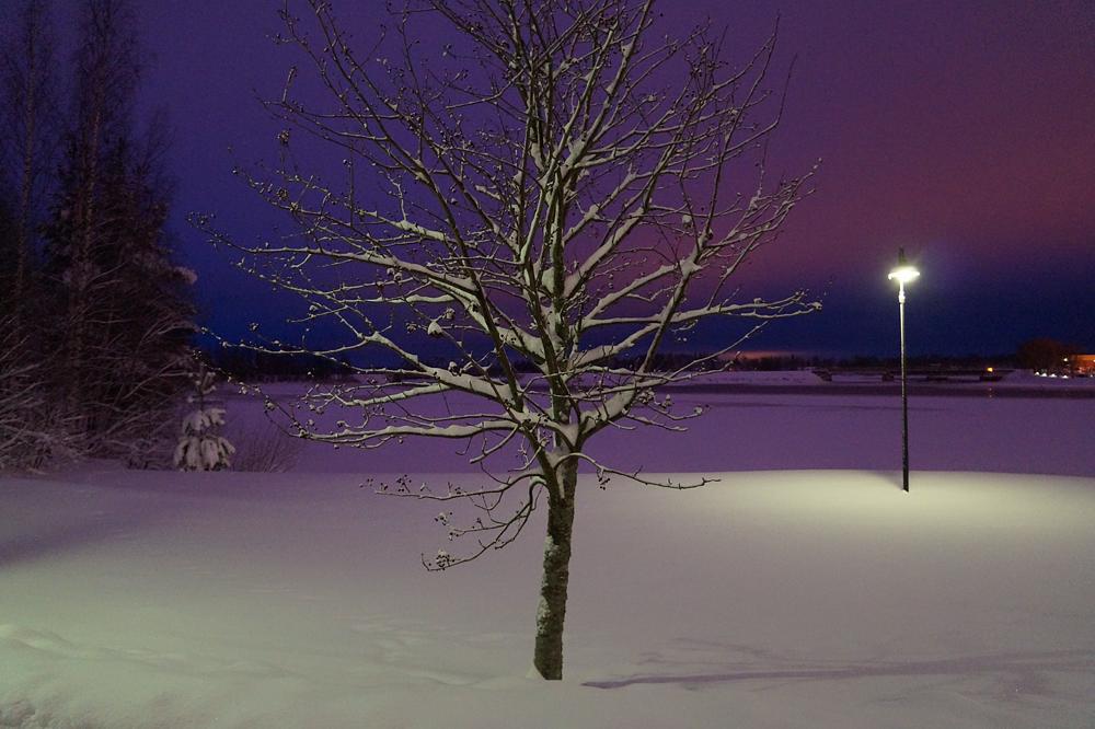 Photo in Cityscape #tree #winter #lake #finland #snow #sky #light