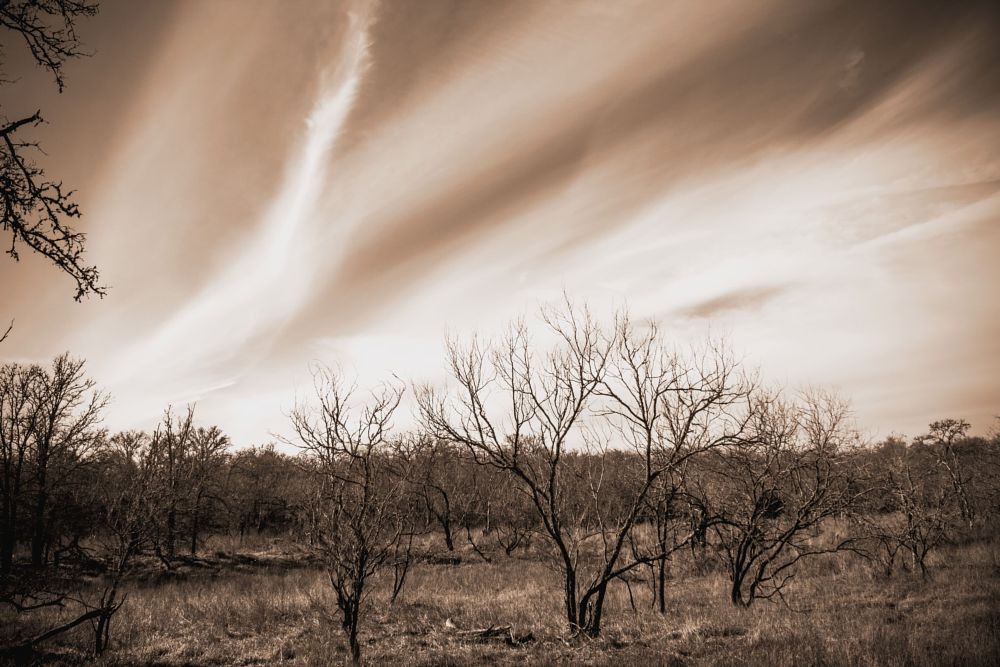Photo in Landscape #clouds #b/w #texas #landscape
