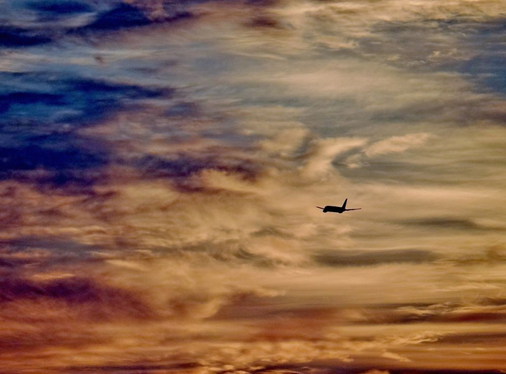 Photo in Travel #plane #sky #travel #sunset