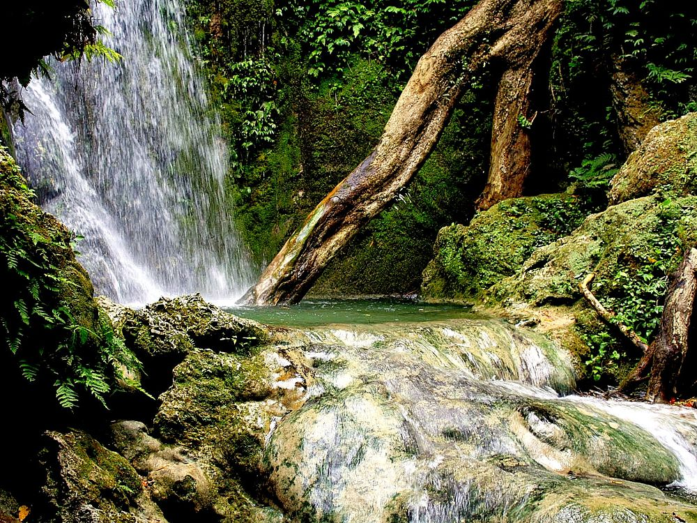 Photo in Nature #waterfall #tropical #island #holiday