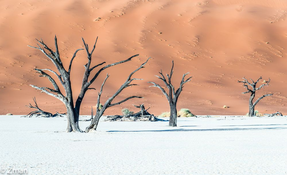 Photo in Landscape #deadflei #daddy #dune #acacia #dead #trees #namibia #workshop #sussovflei