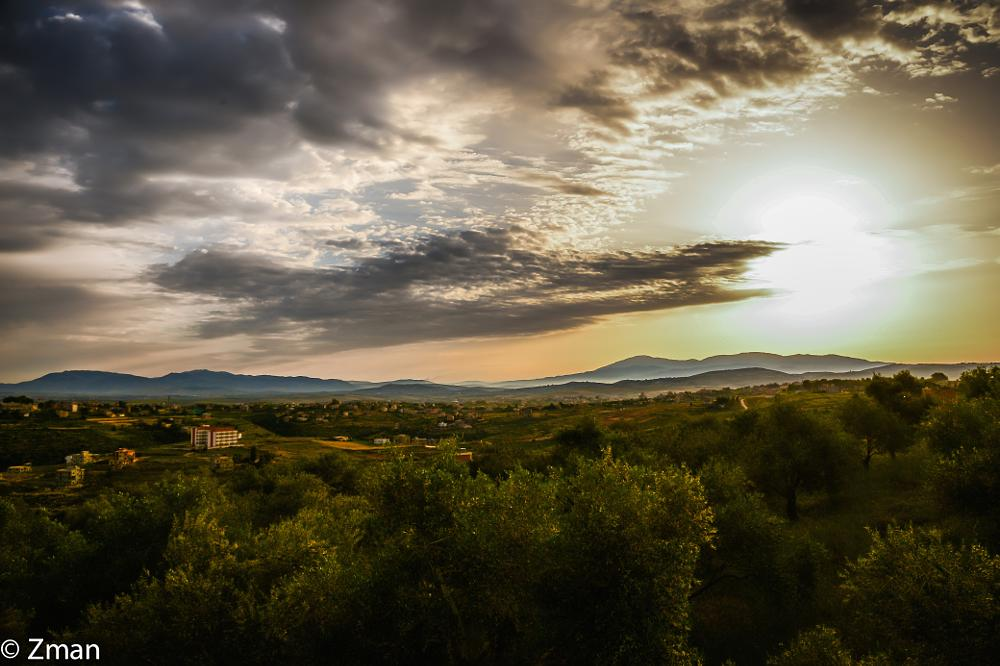 Photo in Landscape #olive trees #sunrise #clouds #sawaneh #our place