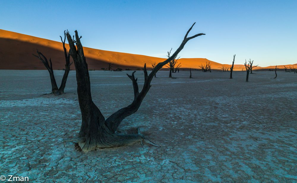 Photo in Nature #deadflei #dead trees #dunes #silty clay #namibia #workshop