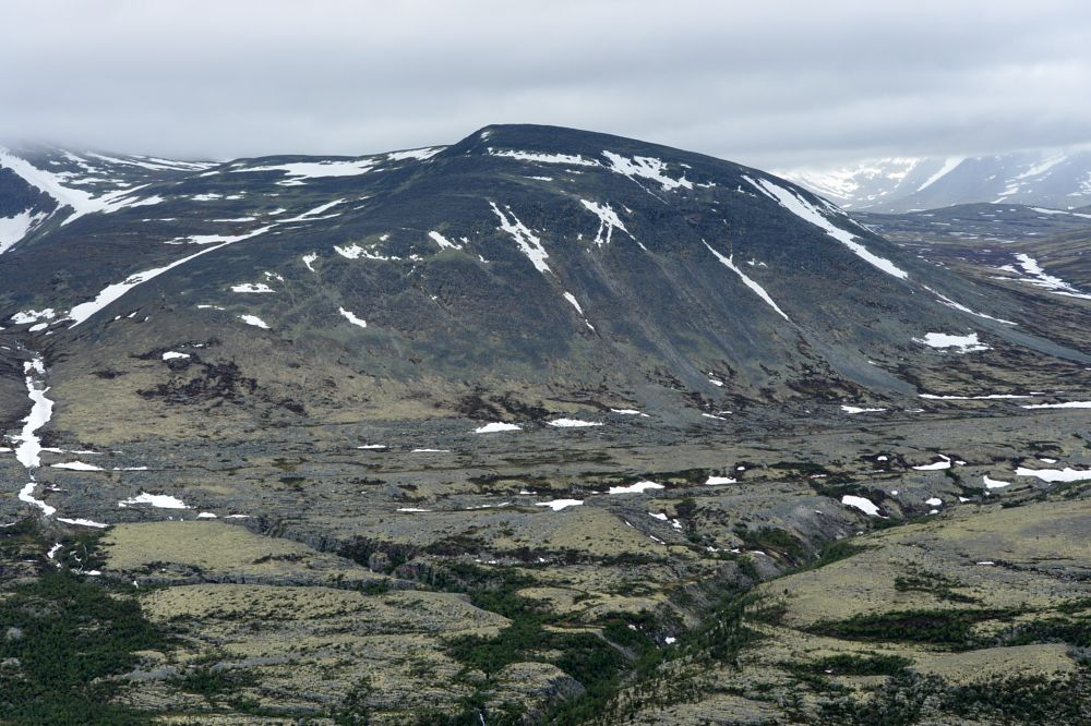 Photo in Nature #rondane #norge #norgesarkivet #norway