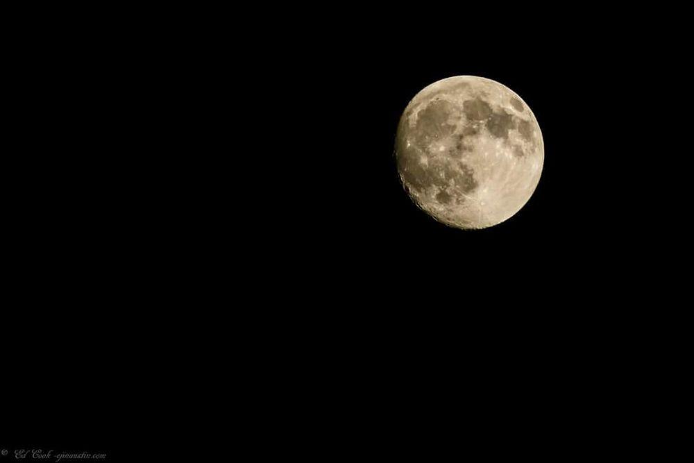 Photo in Random #austin #moon #nighttime #lunar