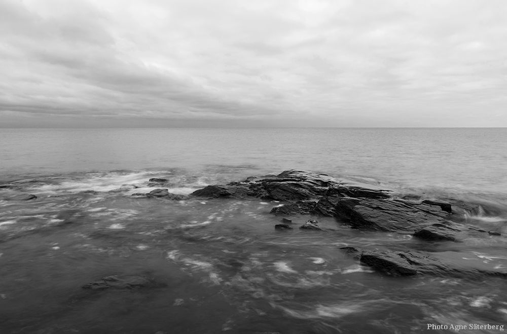 Photo in Black and White #black and white #high coast #world heritage #sweden #agne säterberg #sea