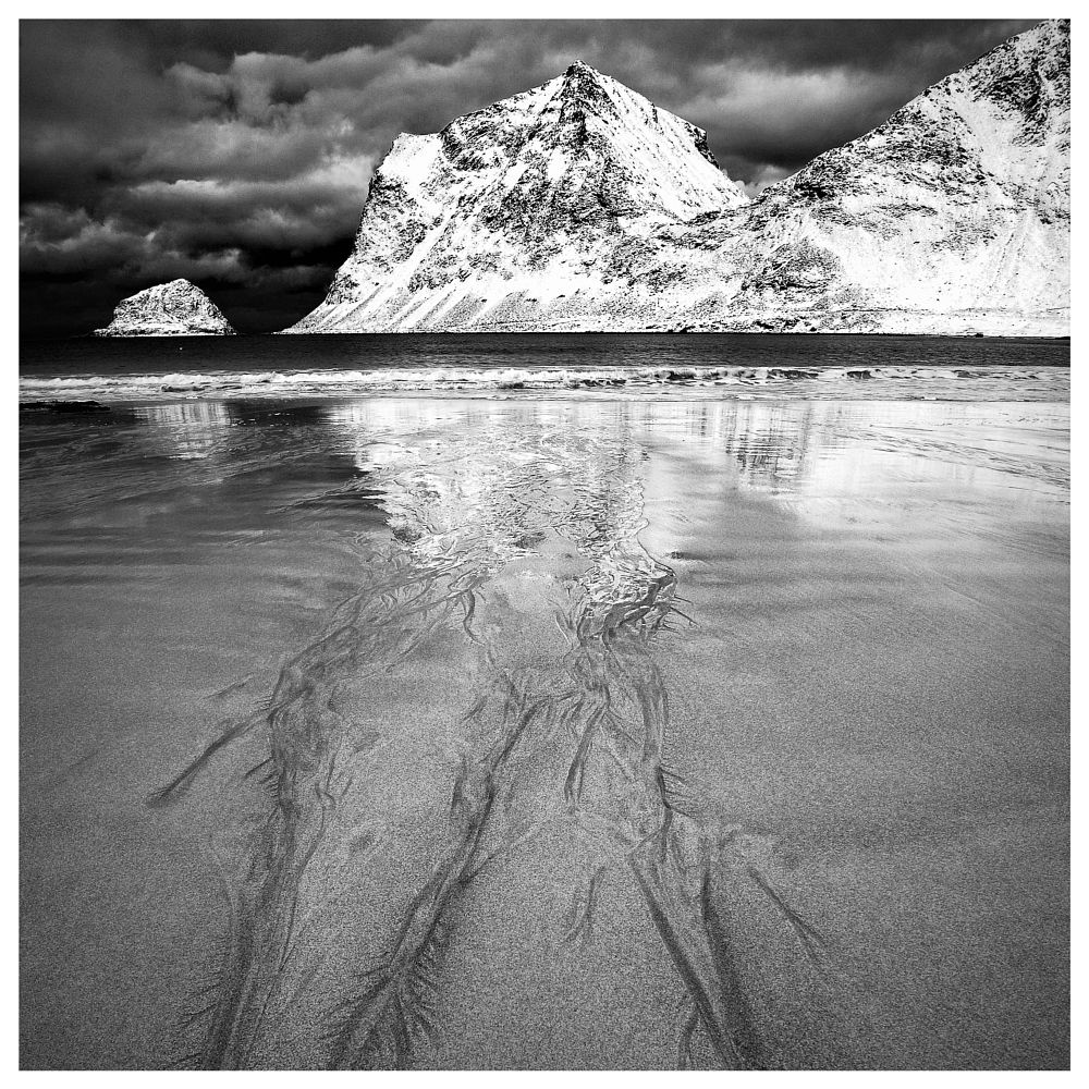 Photo in Landscape #haukland #wiik #beach #lofoten #vestvågøy #norge #norway #mountains #sea #sand #snow #ice #sky #skies #contrast #blackandwhite #mono