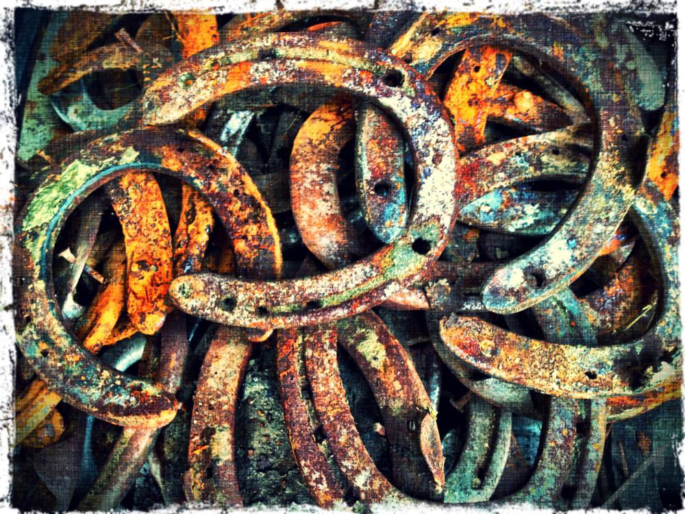 Photo in Animal #rust #horseshoes