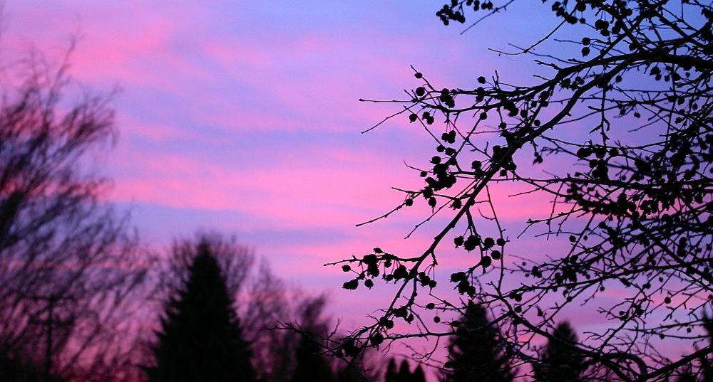 Photo in Random #sunrise